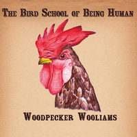 woodpecker wooliams the bird school of being human