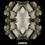 CD Desolo (Merch)