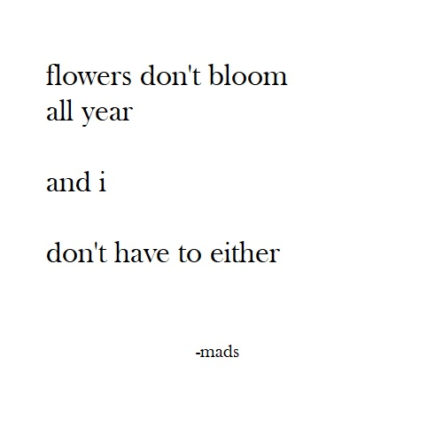 flowers dont bloom all year poem madi draxler